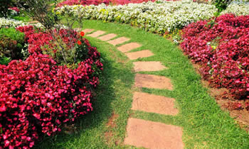 Landscaping in Dayton STATE% Landscaping Services in  Dayton STATE% Landscapers in  Dayton STATE%